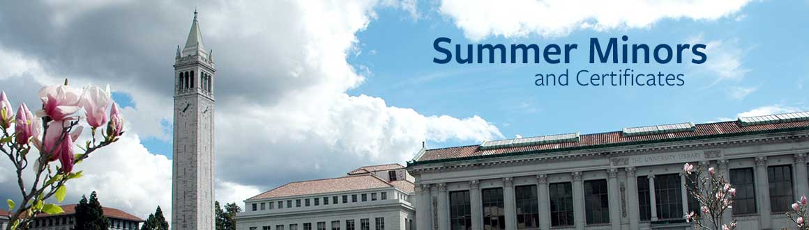 Summer Minors @ Berkeley | Berkeley Summer Sessions